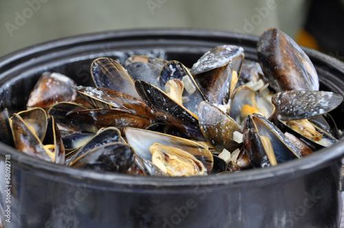 Frische Muscheln in Buttersauce