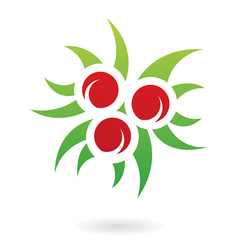 Holly Berries Abstract Icon