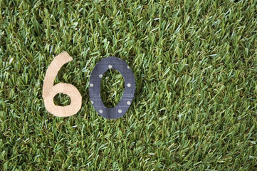 number sixty on grass