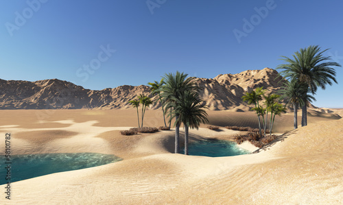 Fotobehang Woestijn Oasis