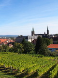 Vineyard in Bamberg, Germany