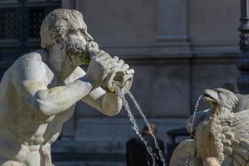 Roma, fontana del Moro (part.)