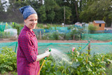 Smiling young woman watering courgette