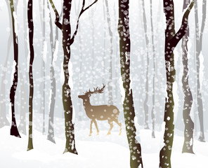 Winter Forest -vector