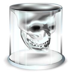 Totenkopf_Whiskyglas