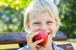 Portrait of a cute child eating a red apple outdoors.