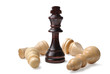 Different wooden chess pieces