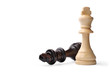 Two wooden king chess pieces on white