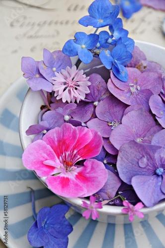 Tuinposter Hydrangea Blüten in antiker Tasse