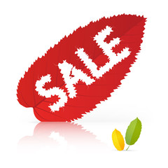 Sale heading on red leaf, vector