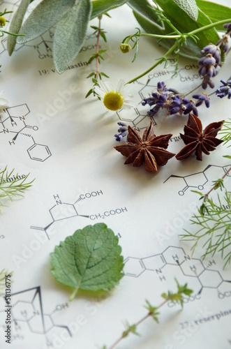 herbs and science