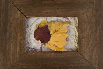Marco de madera con hojas de otoño