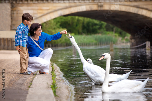 Young mother and son feeding swans at the lake