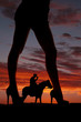 Silhouette woman legs face side cowboy horse