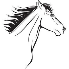 Horses muzzle profile
