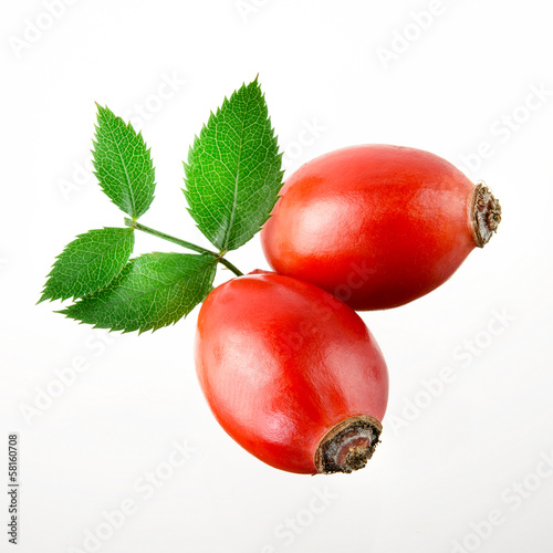 Rose hip. Two berries isolated on a white background.