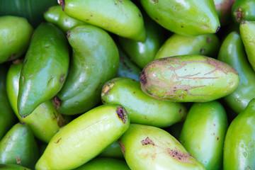 Madan,tropical thai herb