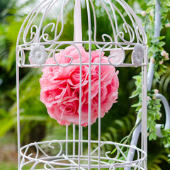 red rose in the bird cage
