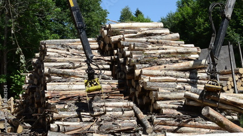 Stack of dry felled tree logs and crane claw grab lift firewood
