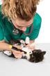 Veterinary with kitten