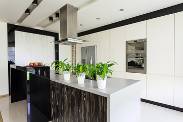 Urban apartment - Bright kitchen