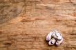 fagioli borlotti - beans