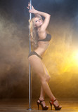 Portrait of a beautiful young female pole dancer
