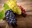 Vine Grapes close-up