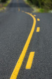 Yellow lines on rural roadway