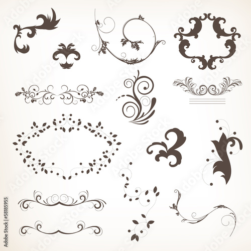 Vector Illustration of Calligraphic Design Elements