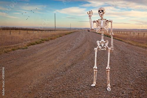 Papiers peints Culture Country Roads Skeleton