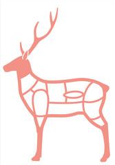 鹿肉の部位