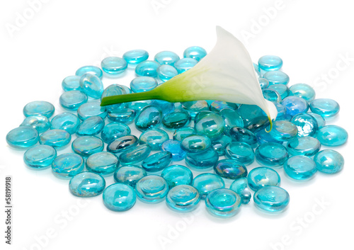 White Calla Lily (Zantedeschia) with Blue Glass Stones on White
