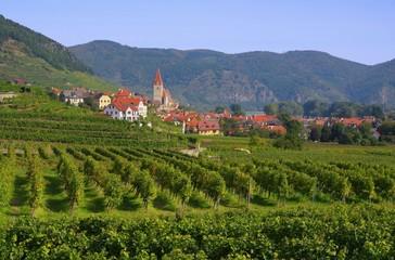 Weissenkirchen in der Wachau - Weissenkirchen in Wachau 06