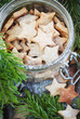 Ginger Christmas Cookies Stars in the glass jar with Fir