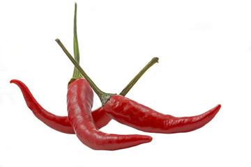 Drei rote Chilischoten auf weißem Hintergrund