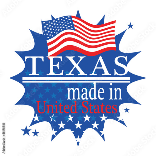 Label with flag and text Made in Texas, vector
