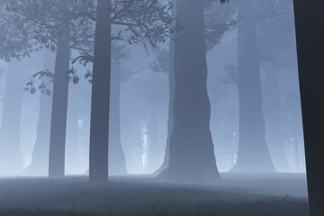 Deep Forest Fairy Tale Scary Scene 3D render