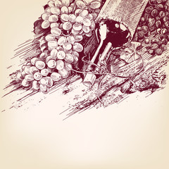 grapes with a bottle of wine vector illustration