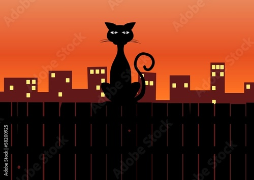 Cat siting on fence