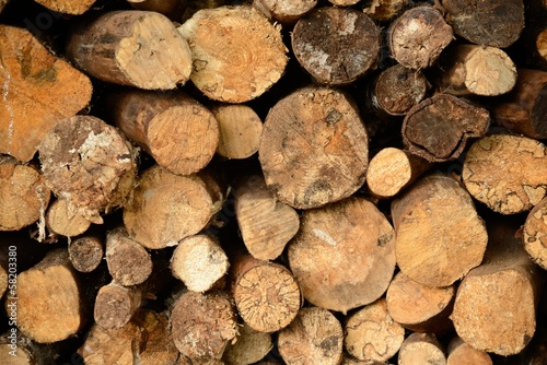 Log pile close-up