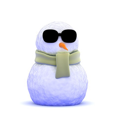 Cool snowman in shades