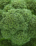 Texture of broccoli