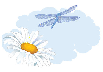 daisy and dragonfly