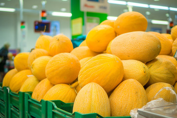 Bunch of yellow melons on boxes in supermarket