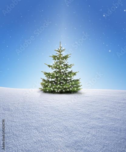 weihnachtsbaum im schnee von by studio lizenzfreies foto 58216798 auf. Black Bedroom Furniture Sets. Home Design Ideas