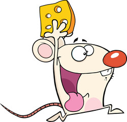 Happy White Mouse Cartoon Mascot Character Running With Cheese