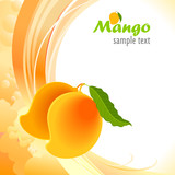 Alphonso - Mango The King of Fruits