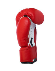 Red and white boxing glove