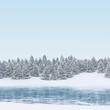 Winter Wald und See